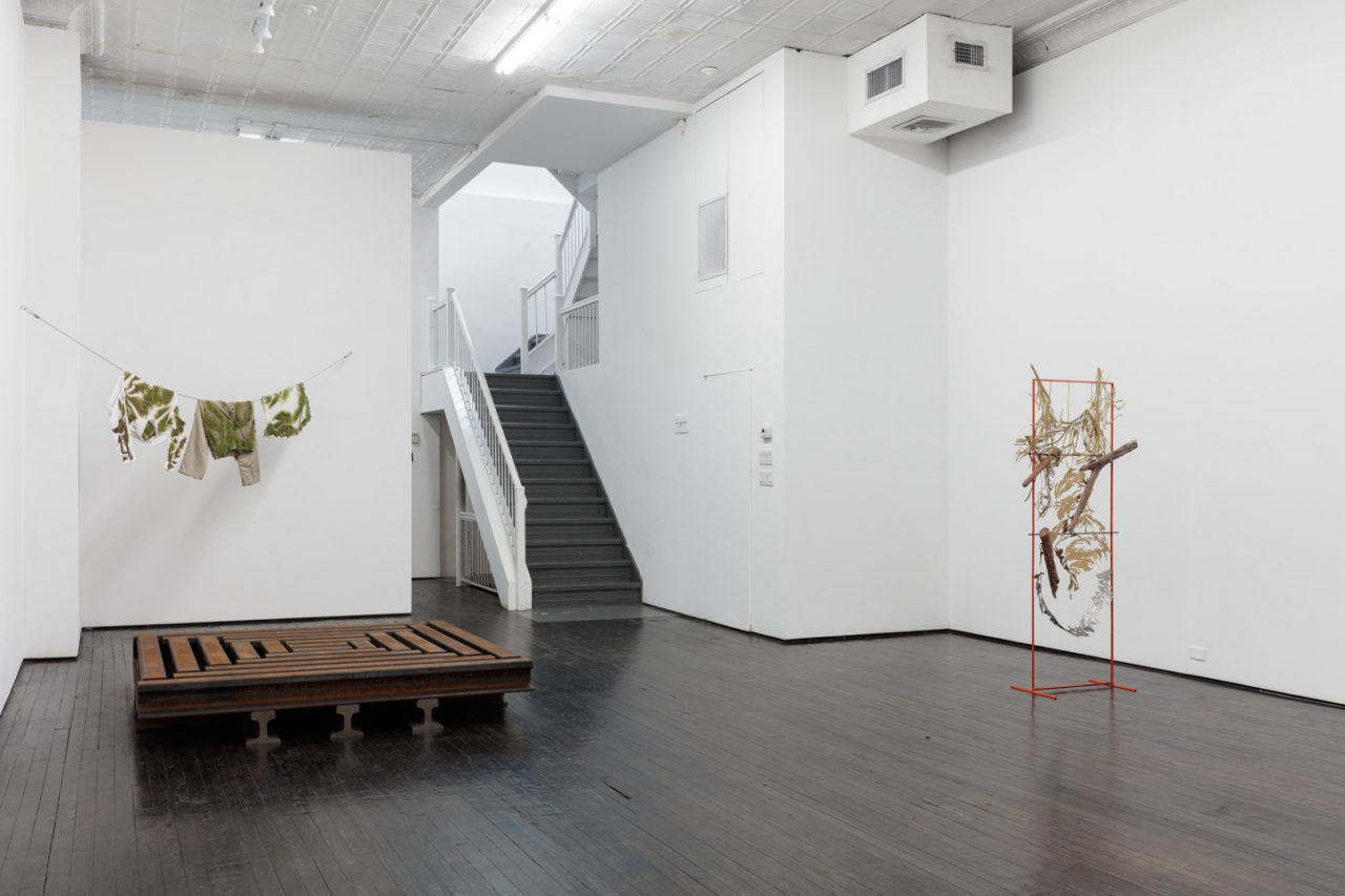 The Waste Land | Installation view, <i>The Waste Land</i>, 2019