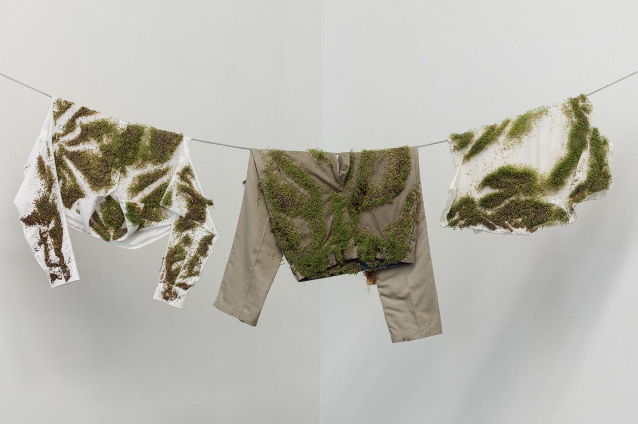 The Waste Land | Bea Fremderman