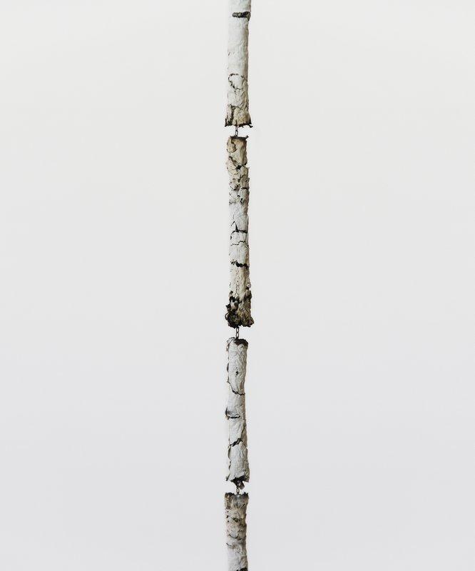 The Waste Land | Andrés Bedoya