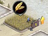 Farming in Revenge of Sultans