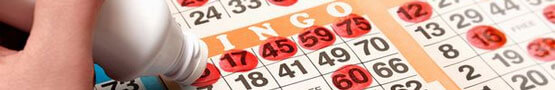 Jocuri Bingo online - Does Online Bingo Maximize New Technology?