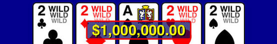 Online Bingo Games - Louisiana Senate Relaxes Video Poker Regulations