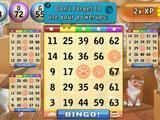 Bingo Cats Bingo Game