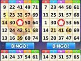 Bingo StarTrek playing with four cards