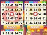 Bingo Carnival: Playing Bingo
