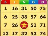 Bingo - Country Ways gameplay