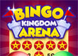 Bingo Kingdom Arena game
