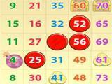 Bingo USA 1 Card Game