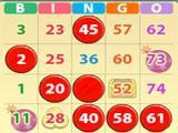 2 Card Game in Bingo USA