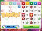 Wild Party Bingo 2 Card Bingo