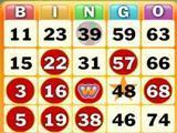 Wingo Bingo