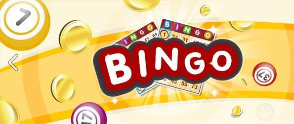 Bingo - Come for the game, Stay for the People!