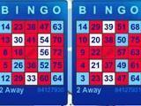 Play bingo in Bingo by Ryzing