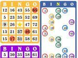 Bingo Master: Checking The Winning Numbers
