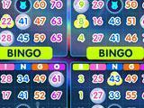 Simultaneous Cards in Bingo Home