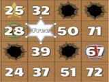 Bingo Showdown 2 Card Game