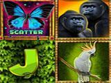 Miracle Slots & Casino Jungle Wild