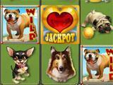 Zynga Slots tournament machine