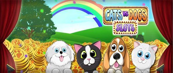 Cats vs Dogs Slots - Juega el juego de tragamonedas más lindo en Facebook aquí y escoge gatos o perros.