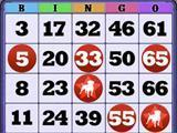 Nice Bingo Card on Zynga Bingo!