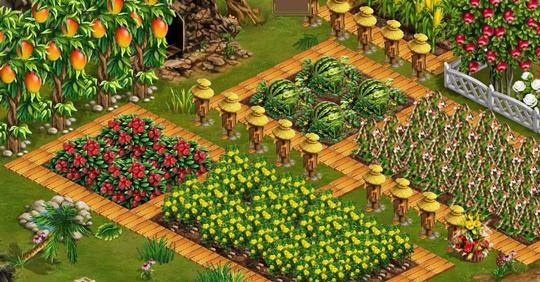 Harvest your crops in Coral Isle