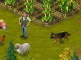 The main character and his dog in Diamond Peak