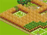Country Story: Growing Crops