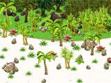 Paradise Valley exploring a new island