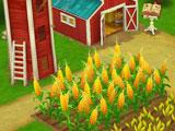 Growing crops in Wild West: New Frontier