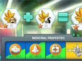 Hempire researching new strains