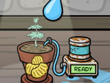 Munchie Farm: Watering the munchie plant
