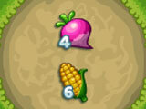 Howdy Farm Corn and Onion
