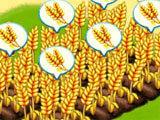 Birds Town 2: Farming