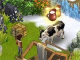 Klondike Adventures milking a cow