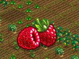 Superfarmers: Planting crops