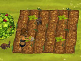 Setting up a farm in Stonies