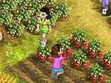 Farm Tribe 2 Gameplay