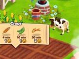 Top Farm Crops
