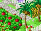 Choco Woods Gameplay