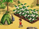 Coral Isle Farming