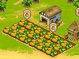 Island Experiment Farming