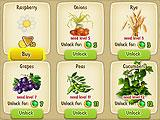 Varieties of Plants in Oasis:The Last Hope