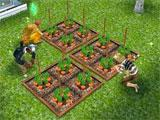 Sims Free Play: Planting carrots