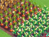 FarmVille2: Harvesting Crops