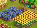 Funky Bay: Growing Crops