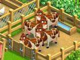 Funky Bay: Farm Animals