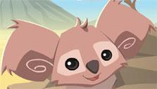 Animal Jam Koala