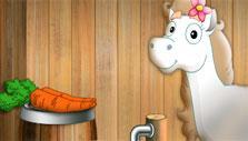 Pony Adventure Preparing your Pony