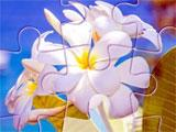 Jigsaw World Cruise Flower Puzzle