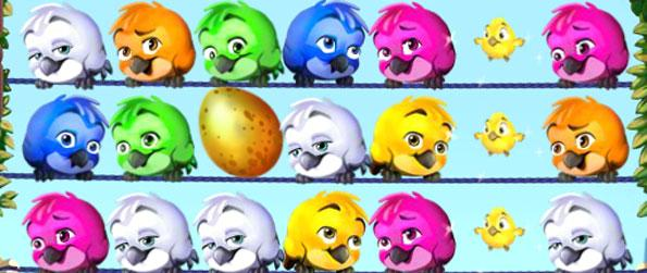 Fluffy - Match the coloured birds together in this cute fun Facebook Game.